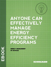 Can Anyone Effectively Manage Energy Efficiency Programs